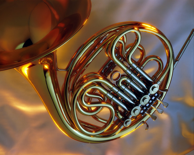 French Horn by Doug Saglio I
