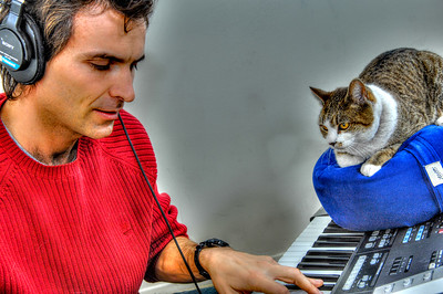 Music And Cat