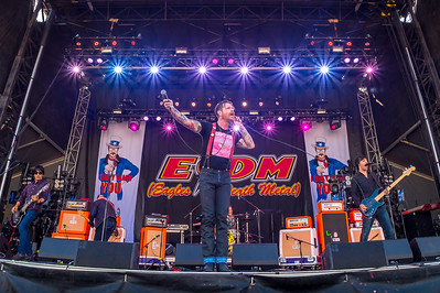 Eagles of Death Metal, USA