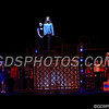 Pippin_11022017_007