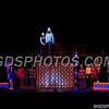 Pippin_11022017_006