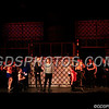 Pippin_11022017_008
