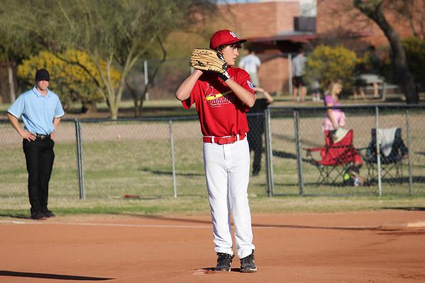 3-6-2013 Cardinals