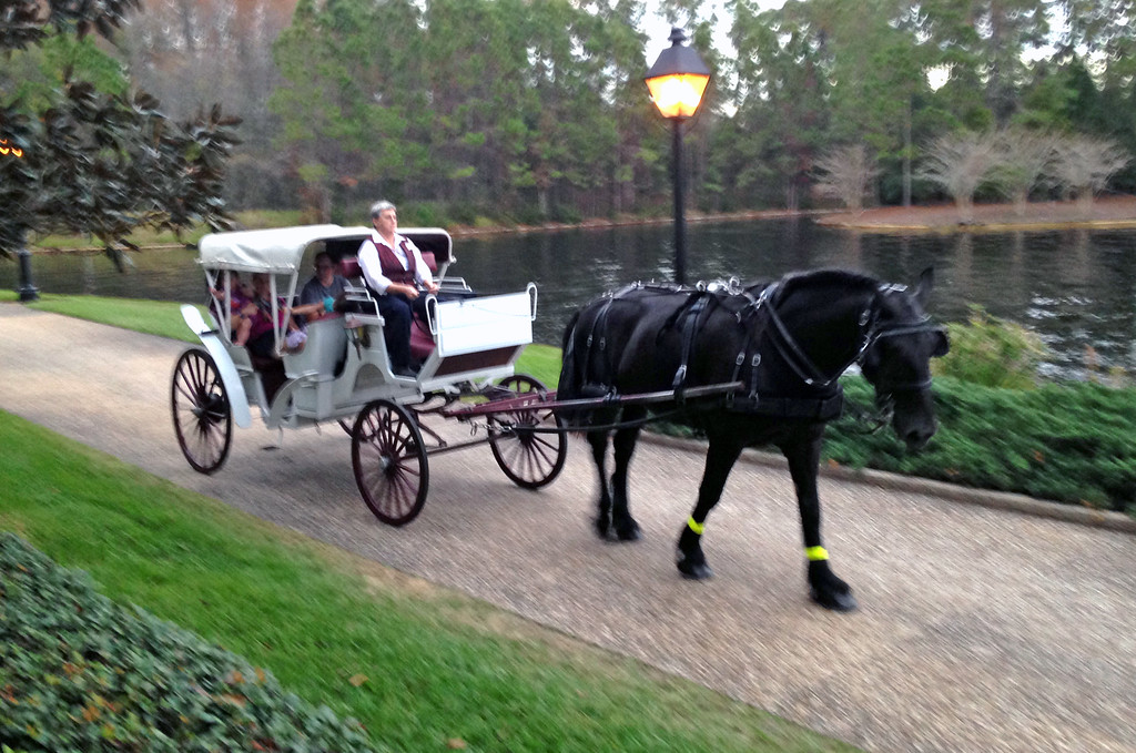 . While staying at the Port Orleans Resort in Walt Disney World, guests can take a carriage ride along a canal. (Photo by Mark Eades, Orange County Register/SCNG) Taken in Orlando at Walt Disney World on Sunday, January 15, 2017.