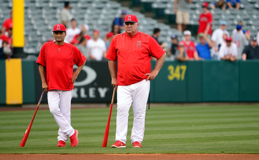 . ... Responsible for the Angels� only World Series, Scioscia is also beloved in L.A. for two World Series titles and two All-Star selections during the catcher�s 13-year playing career with the Dodgers. (Photo by Keith Birmingham/ Pasadena Star-News)