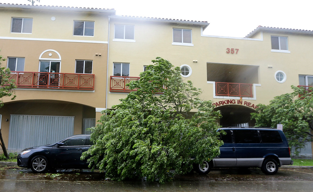 . A fallen tree rests between two parked vehicles in front of a building in Miami Springs, Fla. Wind gusts of 82 mph were reported in Miami, as Hurricane Irma as Hurricane Irma bears down on the Florida Keys, Sunday, Sept.10, 2017, (AP Photo/Alan Diaz)