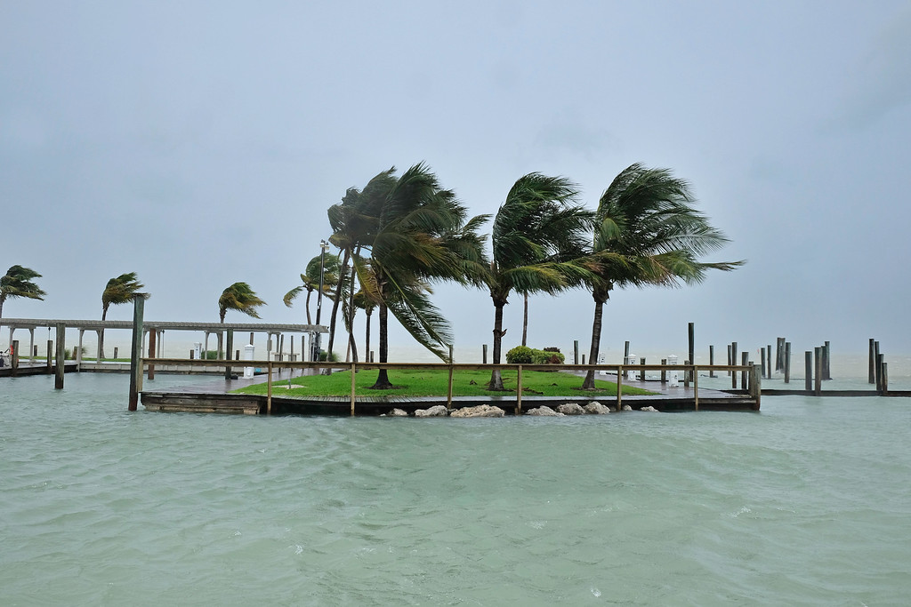 . Palm trees blow in the high wind in the Florida Keys as winds and rain from the outer bands of Hurricane Irma arrive in Islamorada, Florida on September 9, 2017. The number of people in the US state of Florida under orders to evacuate in the face of approaching Hurricane Irma has climbed to 6.3 million, authorities said. (GASTON DE CARDENAS/AFP/Getty Images)