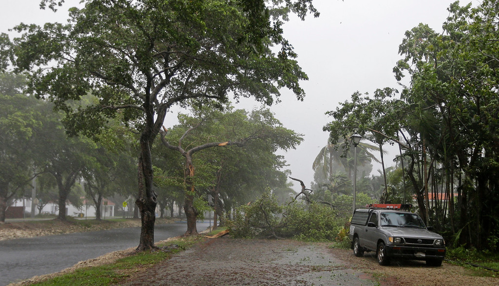 . A fallen tree blocks a street in Miami Springs, Fla., on Sunday, Sept. 10, 2017. Wind gusts of 82 mph were reported in Miami as Hurricane Irma as Hurricane Irma bears down on the Florida Keys. (AP Photo/Alan Diaz)