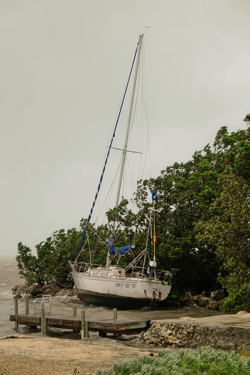 . A sailboat is thrown into the mangroves by rough surf in the Florida Keys as winds and rain from the outer bands of Hurricane Irma arrive in Islamorada, Florida on September 9, 2017. The number of people in the US state of Florida under orders to evacuate in the face of approaching Hurricane Irma has climbed to 6.3 million, authorities said. (GASTON DE CARDENAS/AFP/Getty Images)