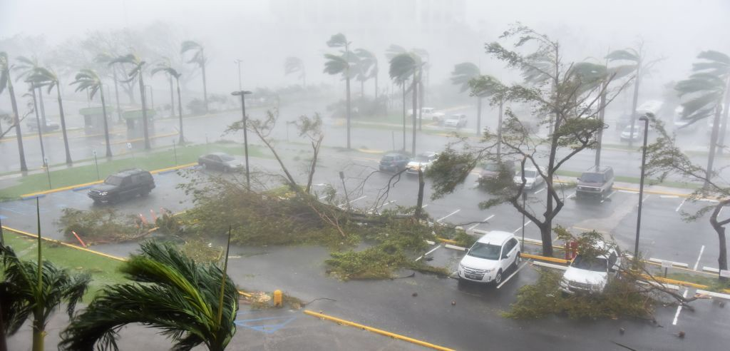 """. TOPSHOT - Trees are toppled in a parking lot at Roberto Clemente Coliseum in San Juan, Puerto Rico, on September 20, 2017, during the passage of the Hurricane Maria. Maria made landfall on Puerto Rico on Wednesday, pummeling the US territory after already killing at least two people on its passage through the Caribbean. The US National Hurricane Center warned of \""""large and destructive waves\"""" as Maria came ashore near Yabucoa on the southeast coast. / AFP PHOTO / HECTOR RETAMAL        (Photo credit should read HECTOR RETAMAL/AFP/Getty Images)"""