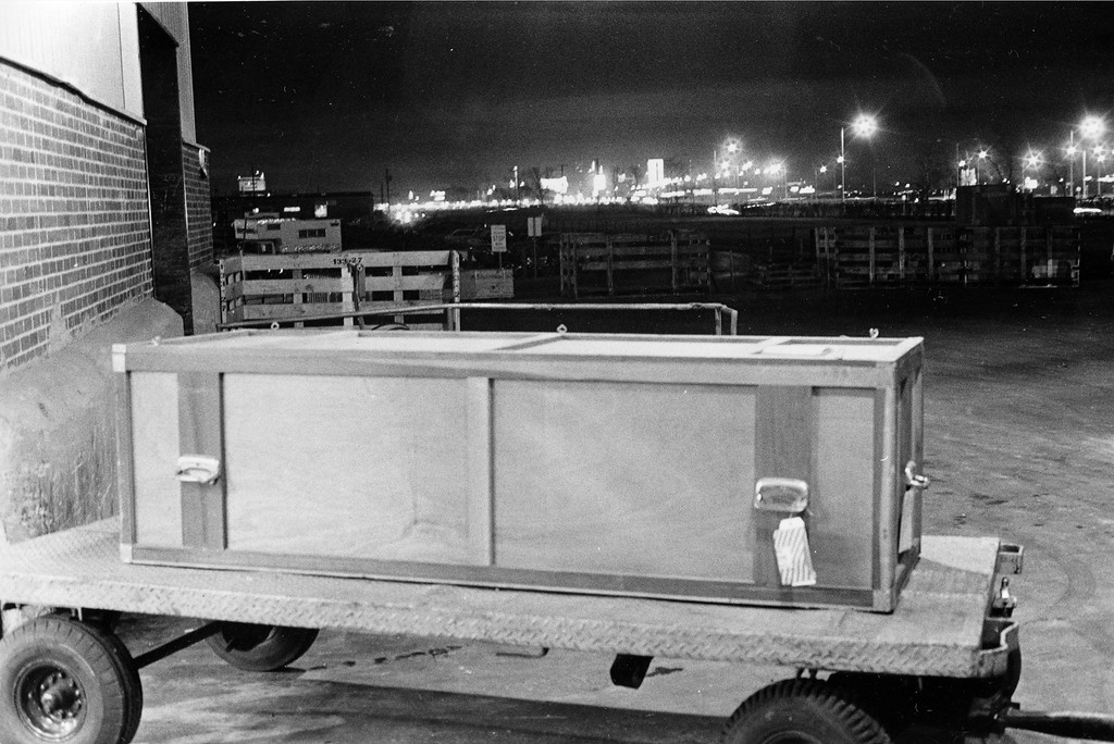 . File - A shipping crate containing the casket and body of Jack Ruby rests on a baggage cart at Dallas\' Love Field in Dallas, Texas, Jan. 4, 1967.   In the background is the night skyline of downtown Dallas, where three years ago Ruby shot and killed Lee Harvey Oswald, accused assassin of President John F. Kennedy.  (AP Photo)