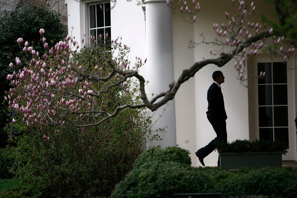 . President Barack Obama walks down the Colonnade to the Oval Office of the White House in Washington, Tuesday, March 23, 2010, after he spoke about the health care reform bill at the Interior Department. (AP Photo/Gerald Herbert)