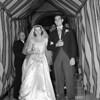Brooklyn Dodgers Branca Weds 1951
