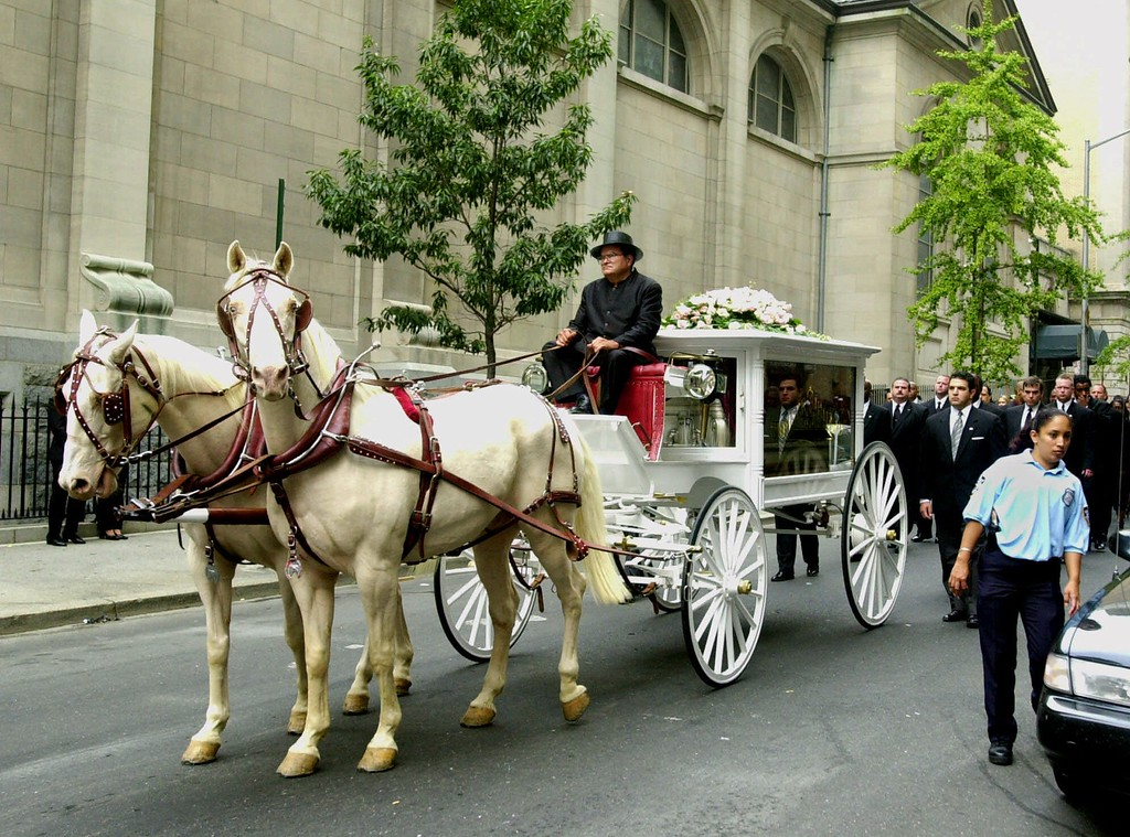 ". A horse drawn hearse bearing the remains of  singer/actress Aaliyah proceeds along Manhattan\'s ""Upper East Side\"" in  New York, to funeral services Friday, Aug. 31, 2001. The 22-year-old singer-actress died Saturday in a plane crash in the Bahamas, where she had been shooting a music video. (AP Photo/Stephen Chernin)"