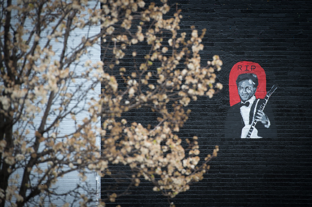 . UNIVERSITY CITY, MO - MARCH 19:  A memorial mural for singer and musician Chuck Berry is seen outside Vintage Vinyl Record Store in University City, Missouri, on March 19, 2017. The rock \'n\' roll pioneer died on Saturday at the age of 90 at his home in a suburb of St. Louis, Missouri. (Photo by Michael B. Thomas/Getty Images)