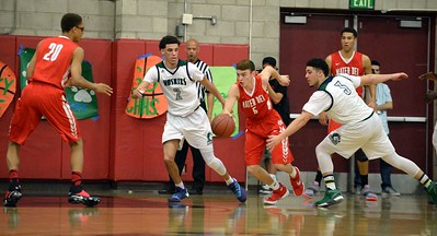 Team of the Year: Chino Hills High School defeats Mater Dei High School 102 - 54 during the CIF Open Division semifinals on Wednesday, February 24, 2016 in Chino, Ca. (Micah Escamilla/Inland Valley Daily Bulletin)