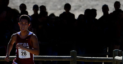 Most Outstanding Individual Performance:  Arcadia's Phillip Rocha (26) wins the division 1 race during the CIF-Southern Section Cross Country finals at Mount San Antonio College in Walnut, Calif., Saturday, Nov. 21, 2015.  (Photo by Keith Birmingham/ Pasadena Star-News)