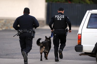 Authorities search for suspects along Richardson Street after multiple shooters killed 14 people and injured 17 others at the Inland Regional Center on Wednesday, December 2, 2015, San Bernardino, Ca.  (Micah Escamilla/The Sun)