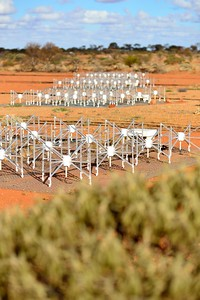 Dipole antennas of the MWA