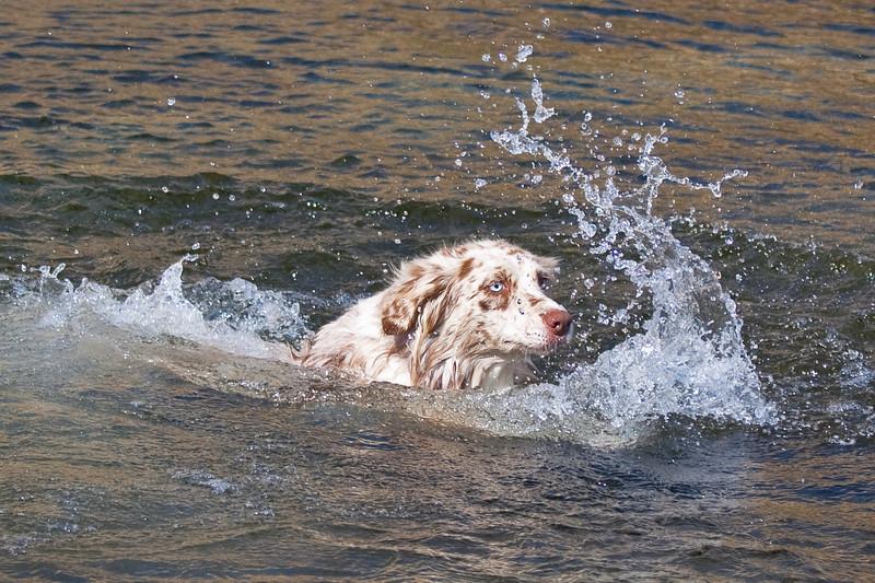 Flint and Rita at the River November 2009