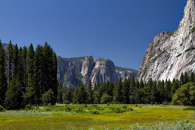 August 16. Meadows around Yosemite Falls.