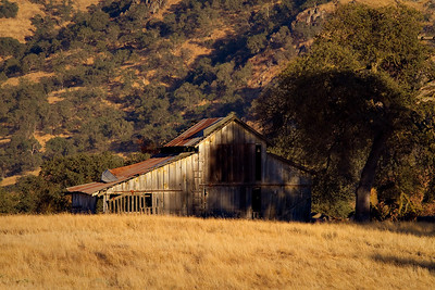 September 12.  Barn on Millwood Dr.  Denise was telling me about this barn just down the road from my place.  Today she came and got me and we went down and got some pictures as the sun was setting.  I got a couple more and put them in the summer landscape gallery:  http://stardogs.smugmug.com/San-Joaquin-Valley/The-Land/Summer-2010/12898474_t2D4z#1005486102_kfx5w
