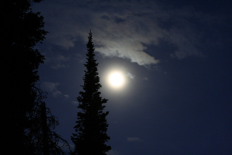 THE MOON RISING OVER MY CAMPSITE ON THE TOP OF SHADOW MOUNTAIN IN GRAND TETON NATIONAL PARK.
