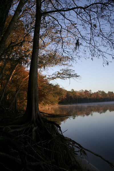 SUNRISE ON THE FAMOUS SUWANNEE RIVER FLORIDA