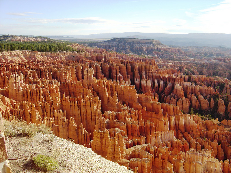 THE AMPHITHEATRE AT BRYCE NATIONAL PARK.