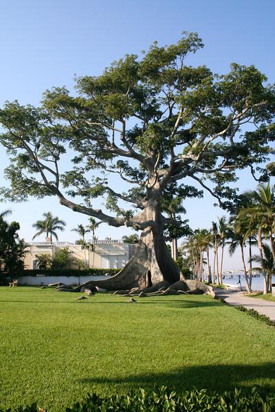 PALM BEACH,FLORIDA