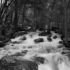 YOSEMITE CREEK IN BLACK AND WHITE.