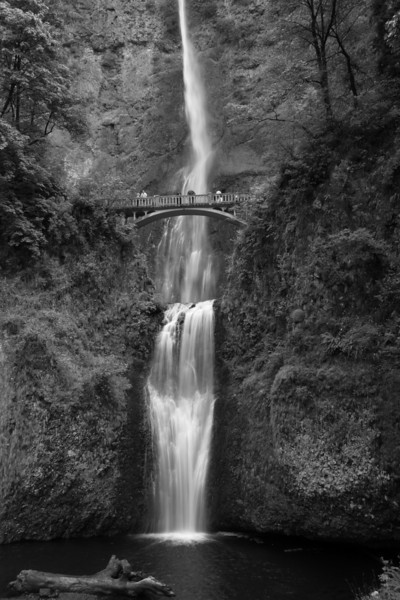 MULTNOMAH FALLS IN THE COLUMBIA RIVER GORGE.