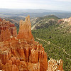 HOODOO'S IN BRYCE CANYON.