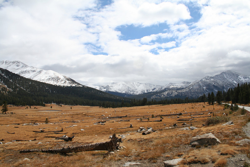 TUOLUMNE MEADOWS IN YOSEMITE.