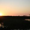 CEDAR KEY FLORIDA SUNSET