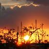 RIVIERA BEACH MARINA FLORIDA SUNSET