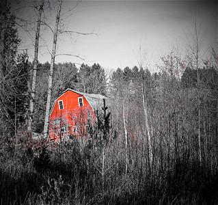 THE SINKING RED BARN