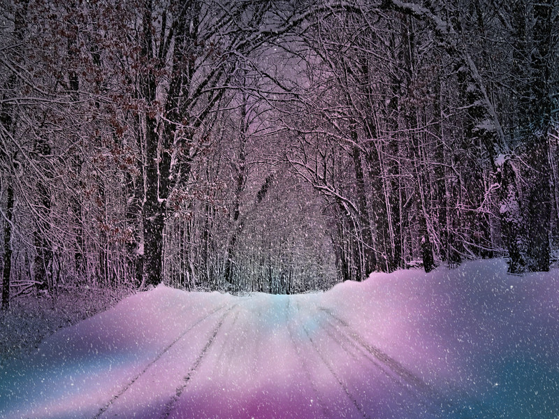 DRIVING THROUGH THE WINTER FAIRYLAND