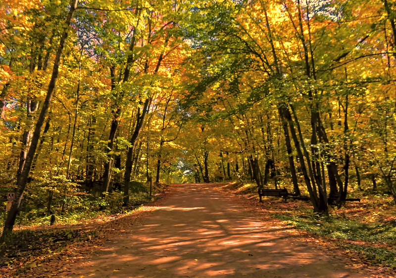 GREAT DAY FOR A LOVELY FALL DRIVE