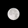 Moonshot (135 mm, cropped)