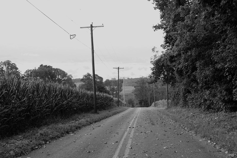 Before Fall (30mm)