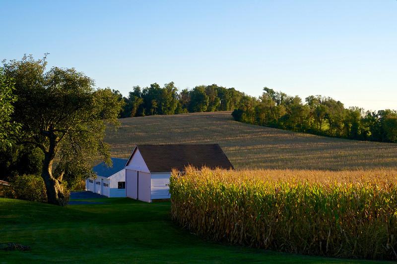 Farmhouse buildings at sunset