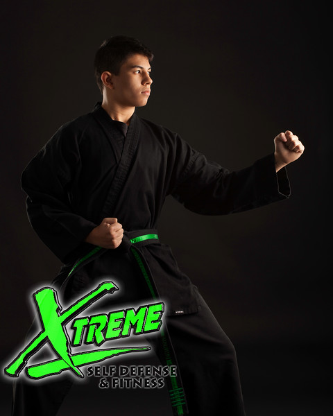 Karate Samples1