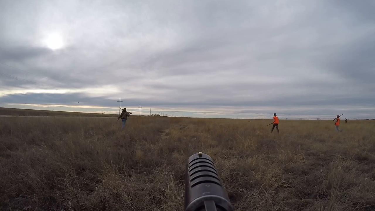 field walking on gun