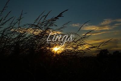 Sunset  _7600