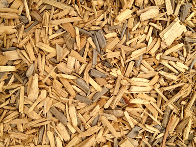 Day 276: Wood chips