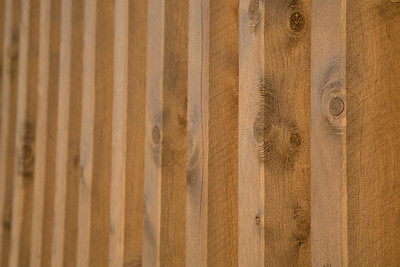 Day 309: Wooden wall