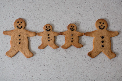 Day 296: Gingerbread family