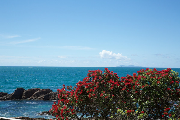 Day 360: A typical New Zealand view at Christmas