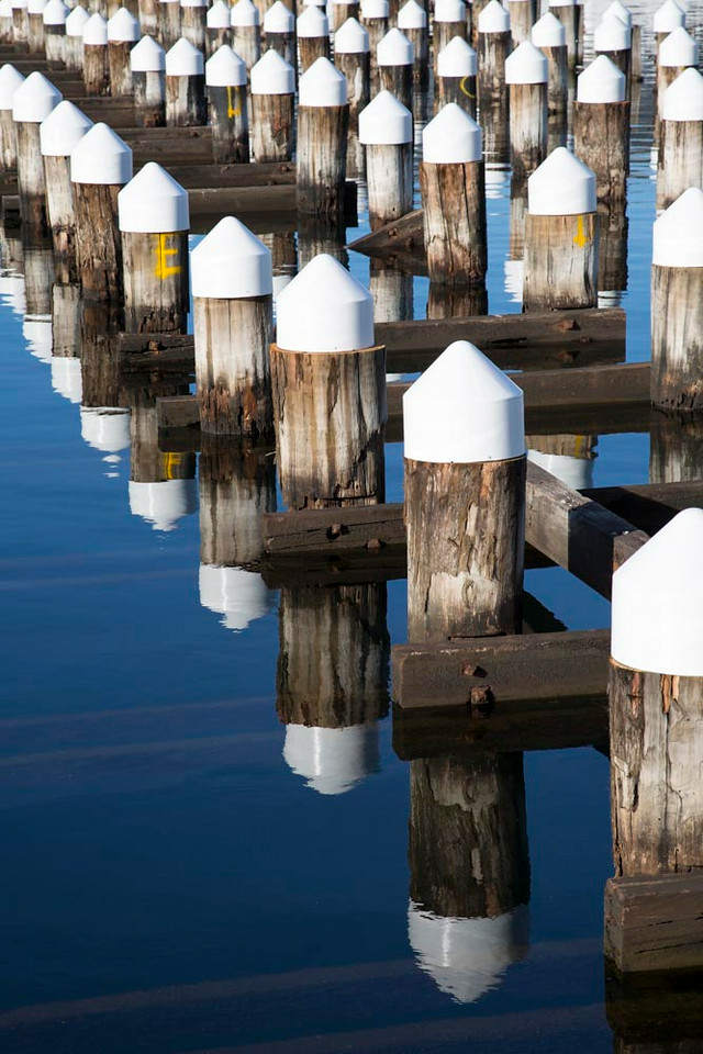 Day 170: Swimming posts, Docklands